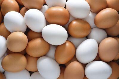penisznoveles, penisznagyobbitas tojással